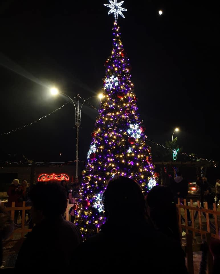 Запалването светлините на градската елха 2019